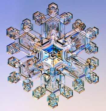 Snowflake, seen with a photomicroscope.